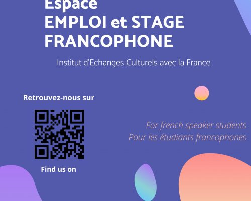 IDECAF – Francophone Employment and Internship Space